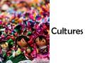 Understanding agent cultures