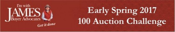 EarlySpring100Auction